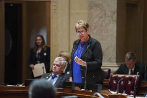 State Sen. Patty Schachtner speakes on the floor of the Wisconsin State Senate