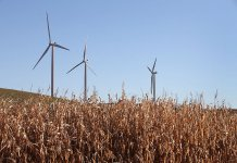 Wind turbines in field in Middleton Wisconsin