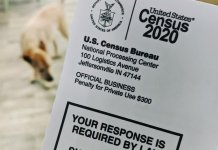 Census ballot cover with dog in background